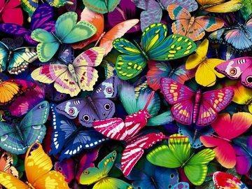 цветные бабочки