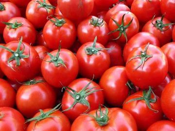 к чему снятся помидоры красные женщине