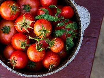 к чему снятся помидоры красные