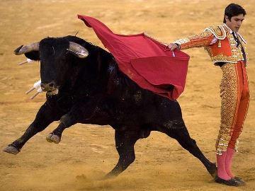 разъяренный бык