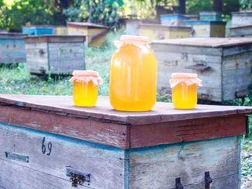 приснился мед