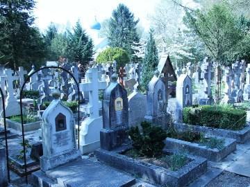 к чему снится кладбище для женщины