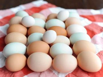 К чему снятся яички куриные