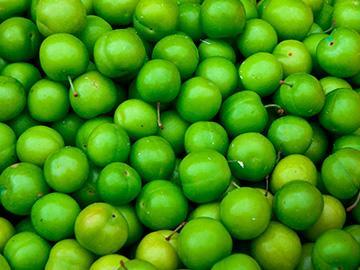 много зеленых яблок
